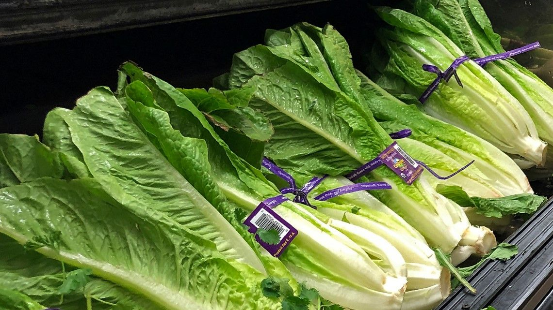 Don't eat romaine lettuce from Salinas, California, US