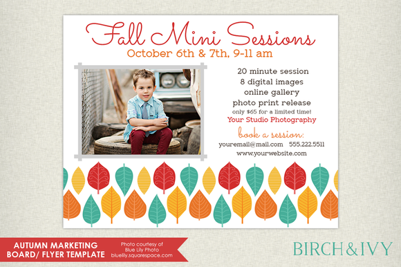 fall mini session flyer template by birch and ivy on graphicsmag