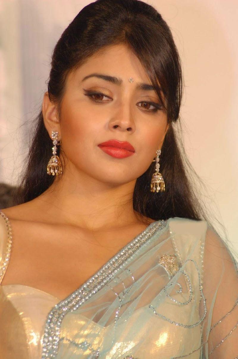 Shriya Saran Hd Photos In Sexy Blouse  Blue Saree  Bold -4959