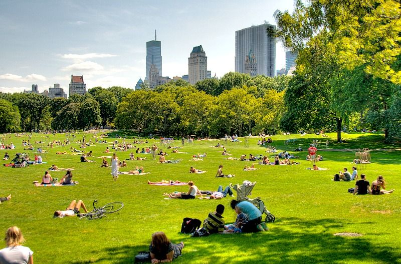Central Park Summer Events | Summertime in NYC | New york