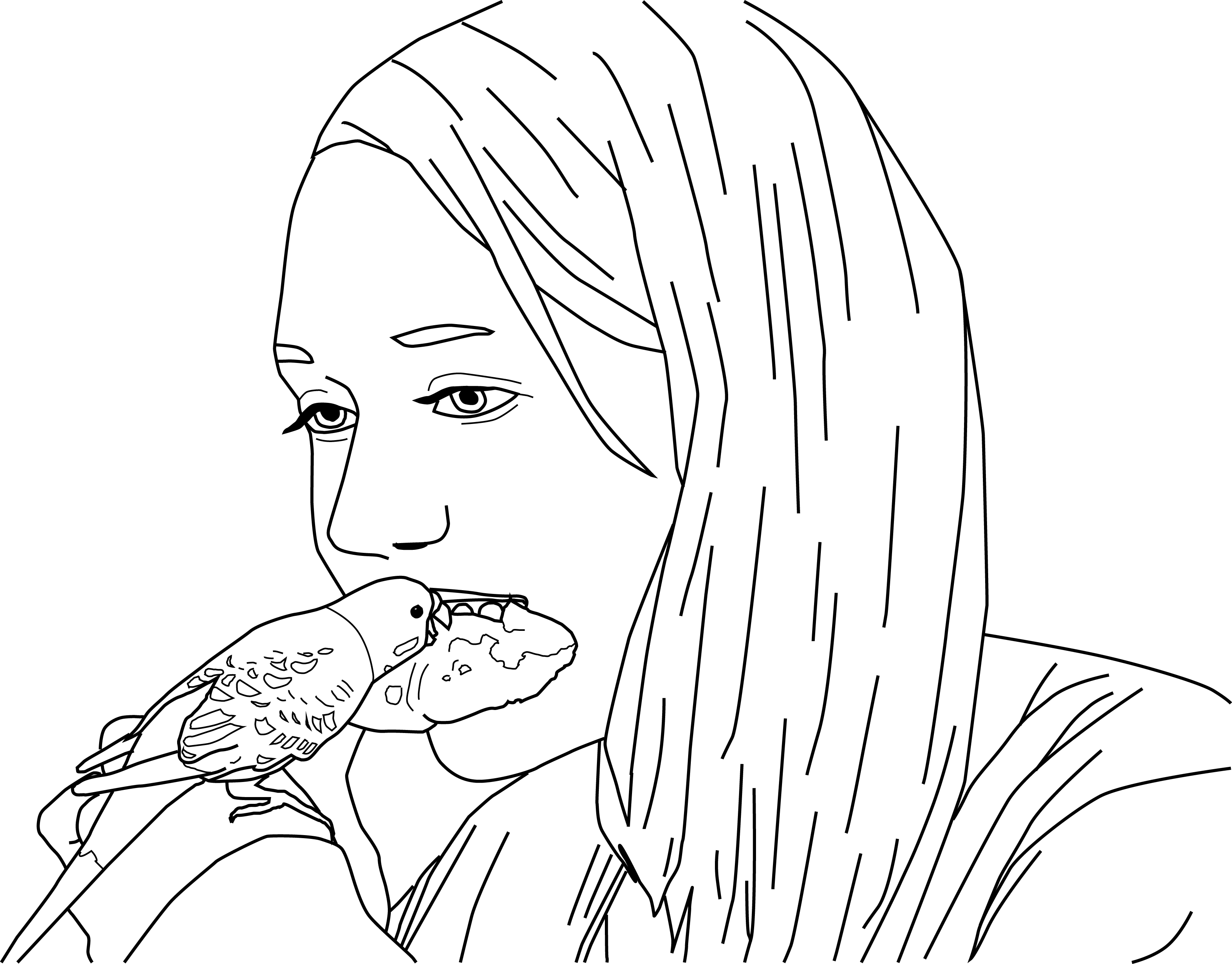 Parakeet Coloring Pages Parakeet Parakeet Coloring Pages Sketches