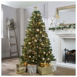 Buy Tesco 6ft Highland Fir Christmas Tree From Our Christmas Trees Range Tesco Com Christmas Decorations Tree Fir Christmas Tree Christmas Tree