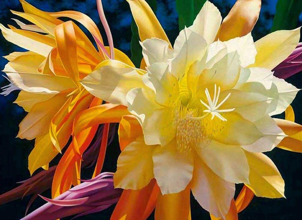 cuadros-de-flores-al-oleo-en-oleo.jpg 1.024×746 piksel