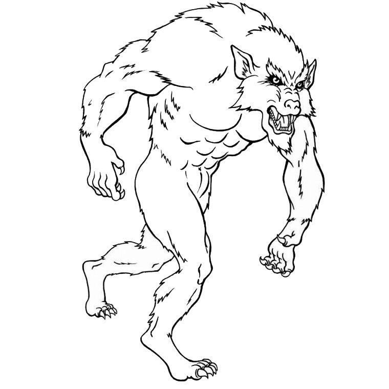 dessin a imprimer loup