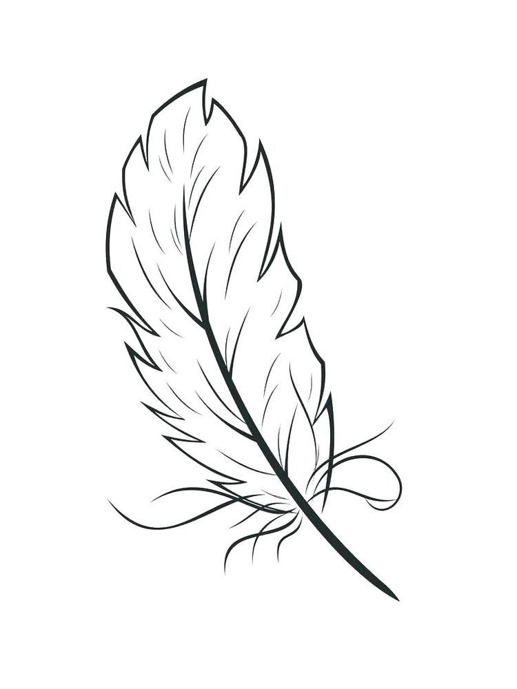 Printable Turkey Feather Coloring Page Feather Coloring Page To