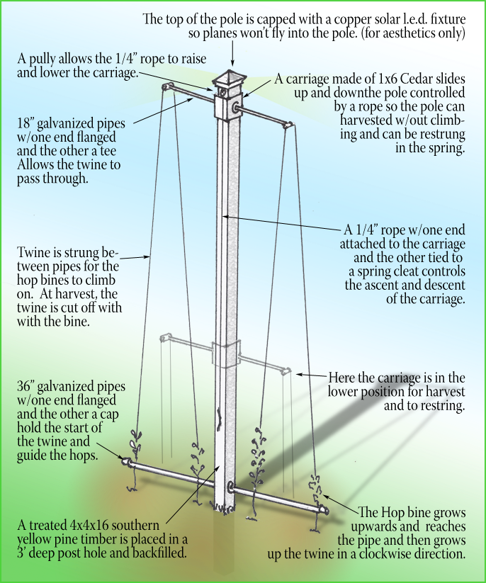 Diagram Of A Hops Yard - Auto Electrical Wiring Diagram •