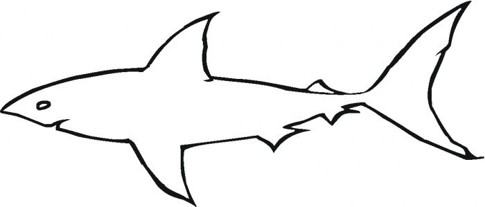 Printable Shark Outline | Great White Shark Outline coloring page ...