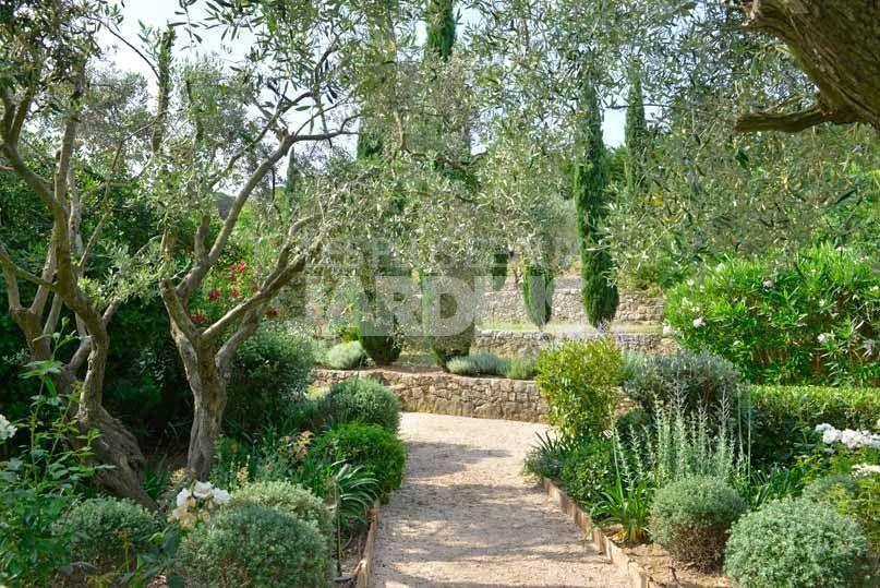 allee et olea europaea olivier dans un jardin mediterraneen am nagement jardin pinterest. Black Bedroom Furniture Sets. Home Design Ideas