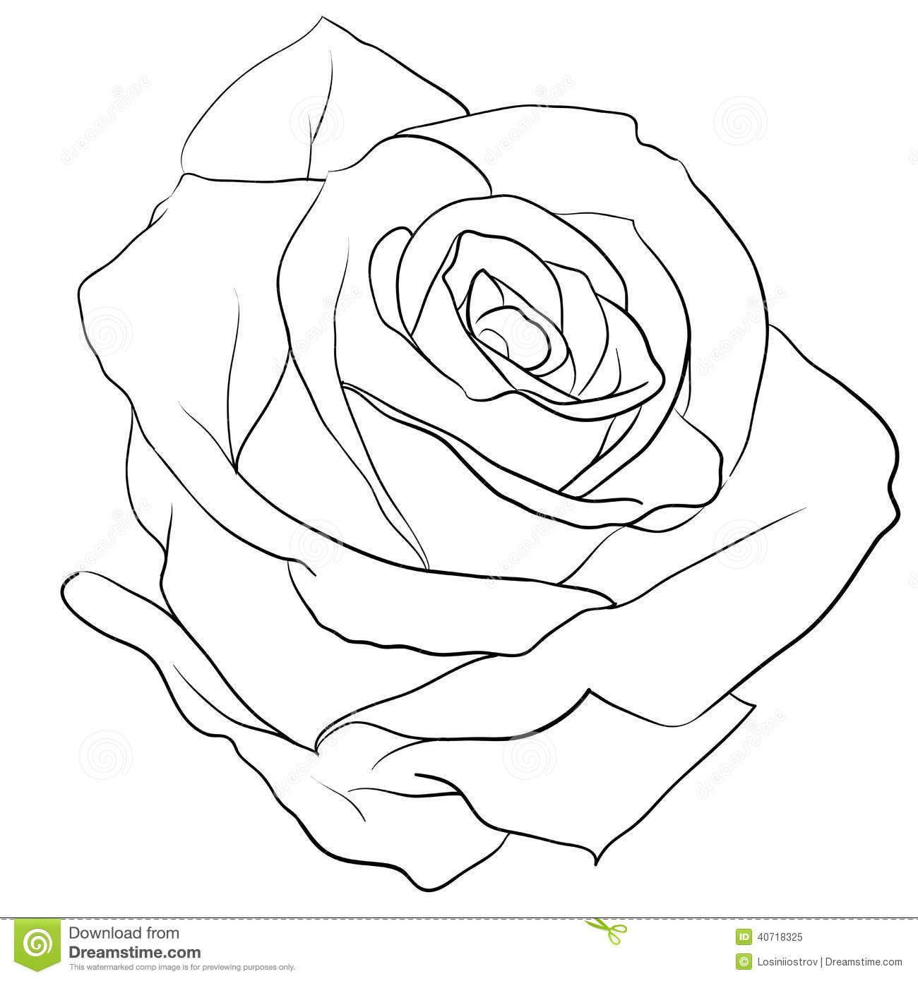 Simple Rose Tattoo Outline: Rose Colouring Page For Adults