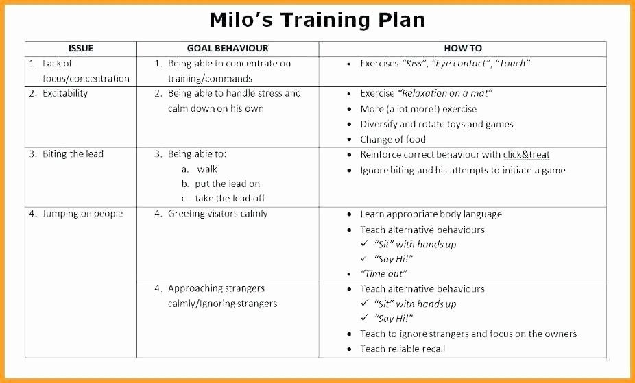 template dog training schedule