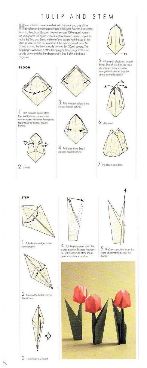 Step By Step Instructions How To Make Origami A Tulip. Stock ... | 1219x489