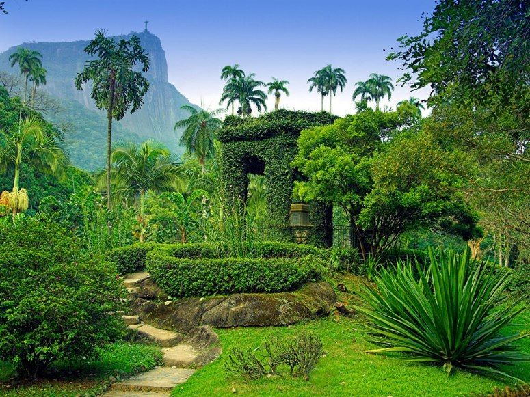 The World\'s Most Beautiful Botanical Gardens | Rio de janeiro brazil ...