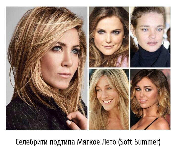Soft Summer Type Hair Beauty Hair Color