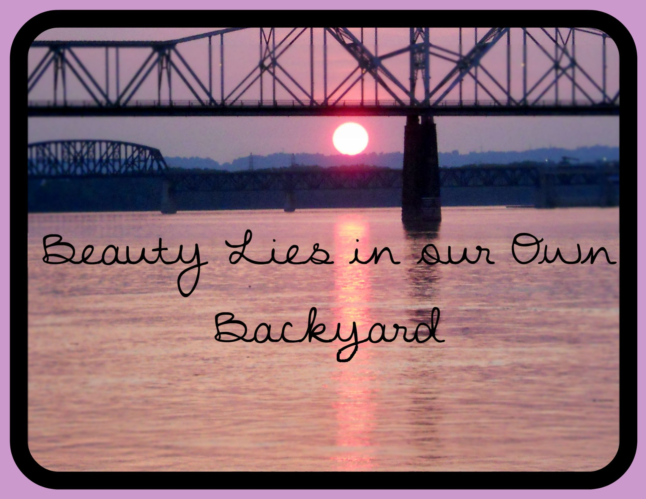 beauty lies in our own backyard original picniked quote pictures