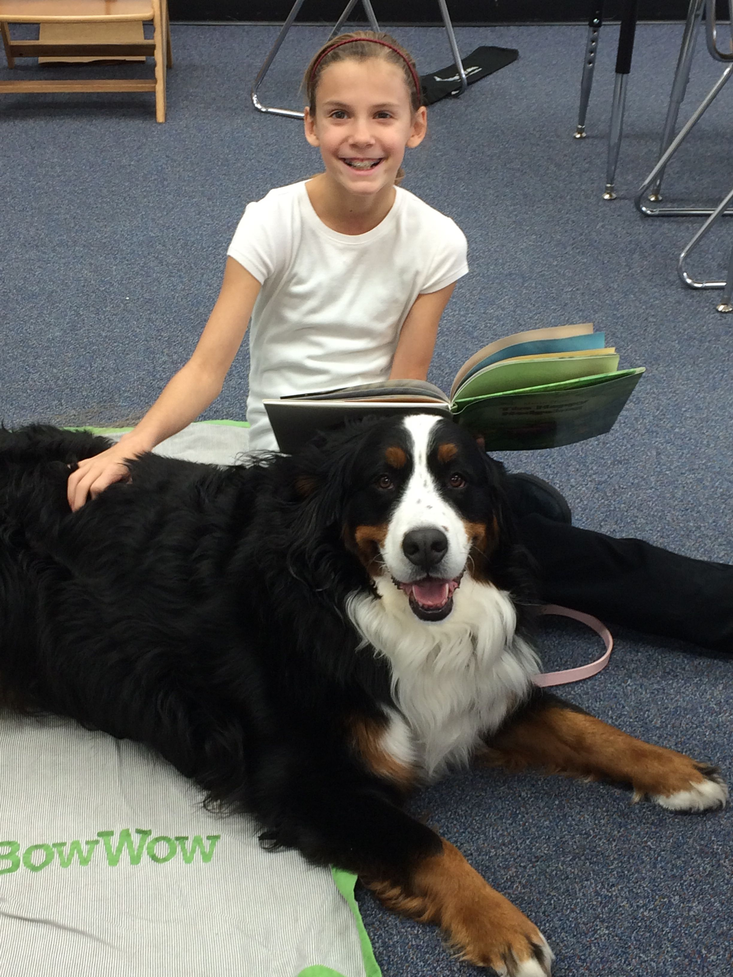 I love this story keep reading ellie rose our certified therapy ellie rose our certified therapy dog at 1betcityfo Image collections