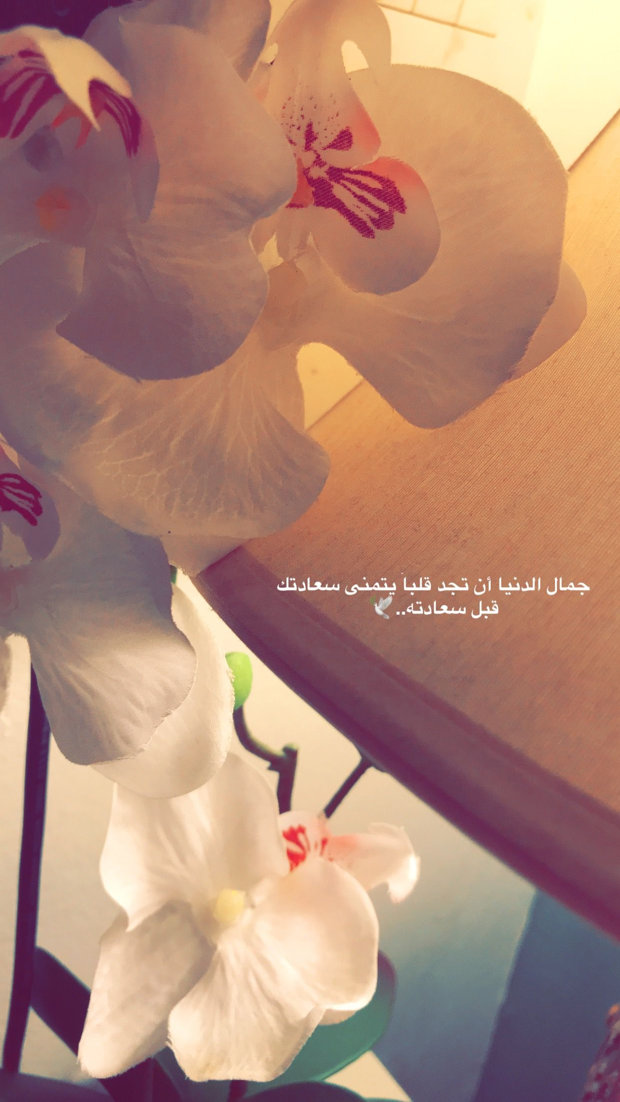 Pin By Salha Sy On My Photos Beautiful Arabic Words Girl Shadow Mixed Feelings Quotes