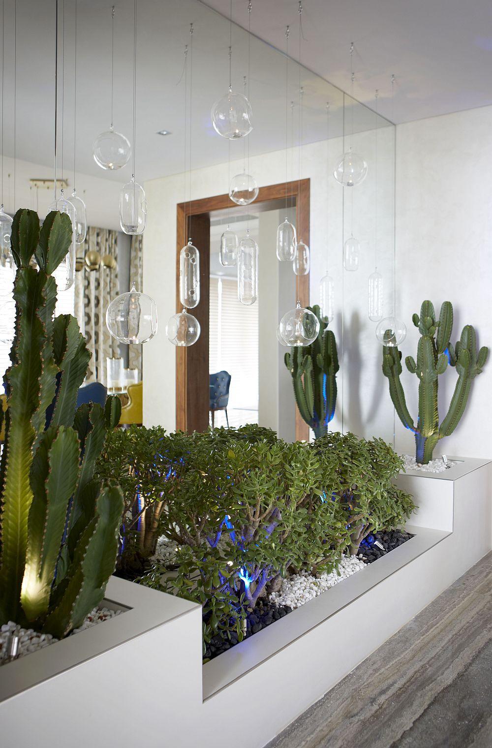 Hangining terrariums and an indoor garden inside