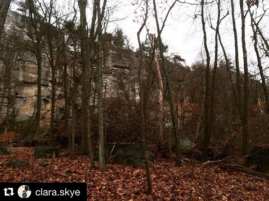 #Repost @clara.skye  Back where I spent two summers out collecting data for Mohonk Preserve and I still know it like the back of my hand. I only got lost three times this morning. #mohonkpreserve #modelintern #datacollectinglikeaboss