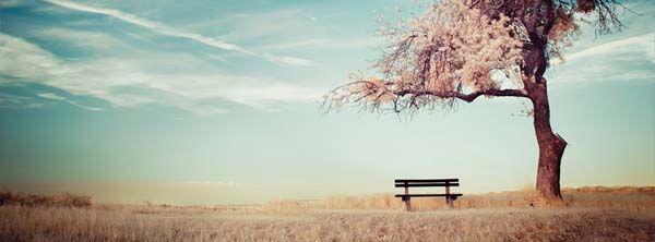 ein ruhiges plà tzchen zum ausruhen cover pinterest facebook