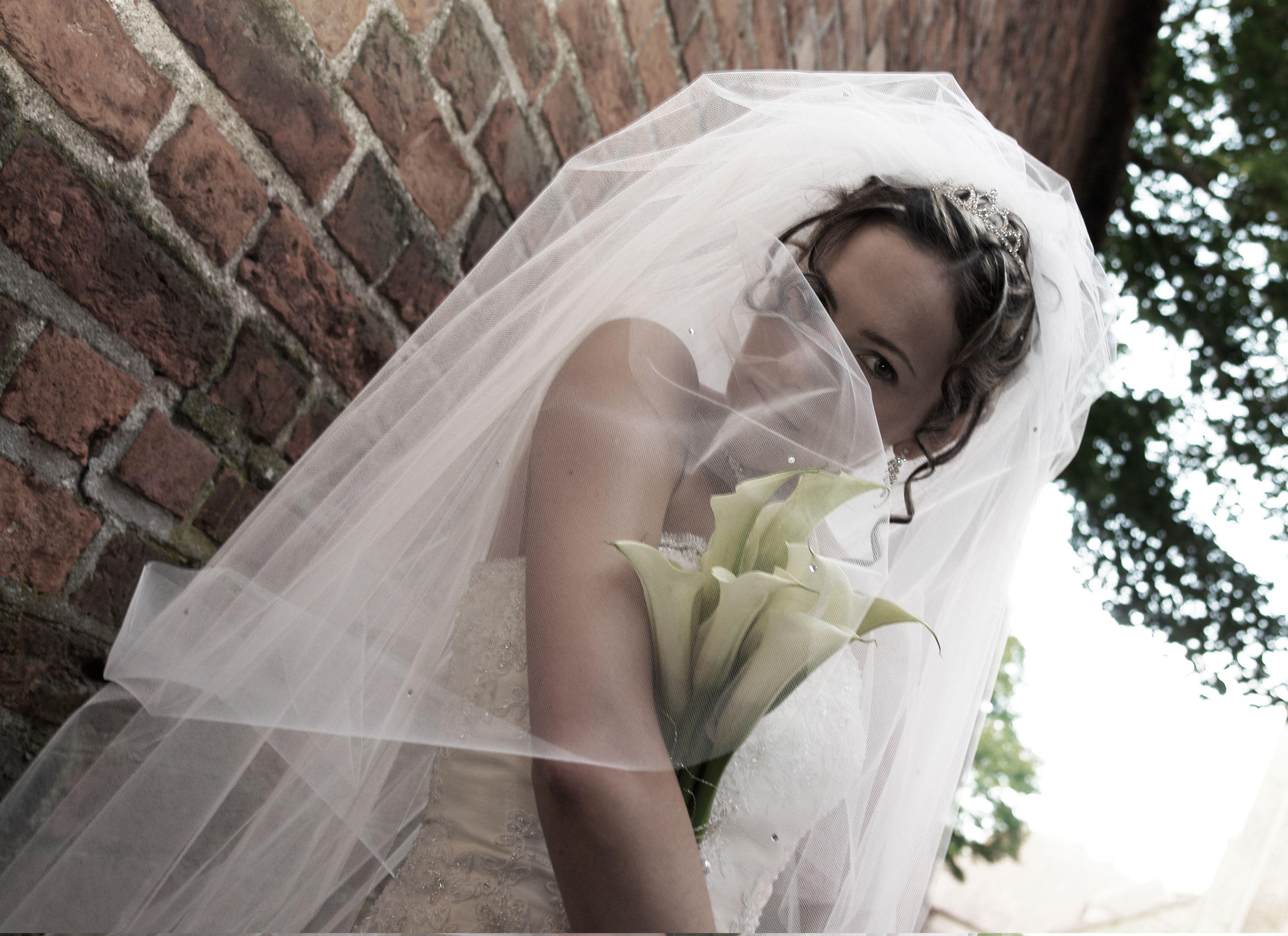 Nice veil wedding photo ideas pinterest veil dream wedding