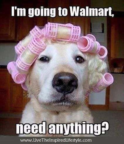 I think I've seen her shopping at my local store!  LOL