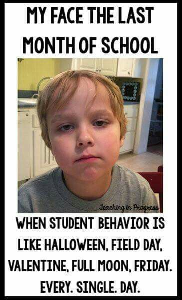 Pin By Elizabeth Kennedy On Teaching Teacher Jokes Teacher Memes Funny Teaching Memes