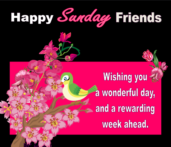 Happy Sunday Friends Sunday Sunday Quotes Happy Sunday Sunday
