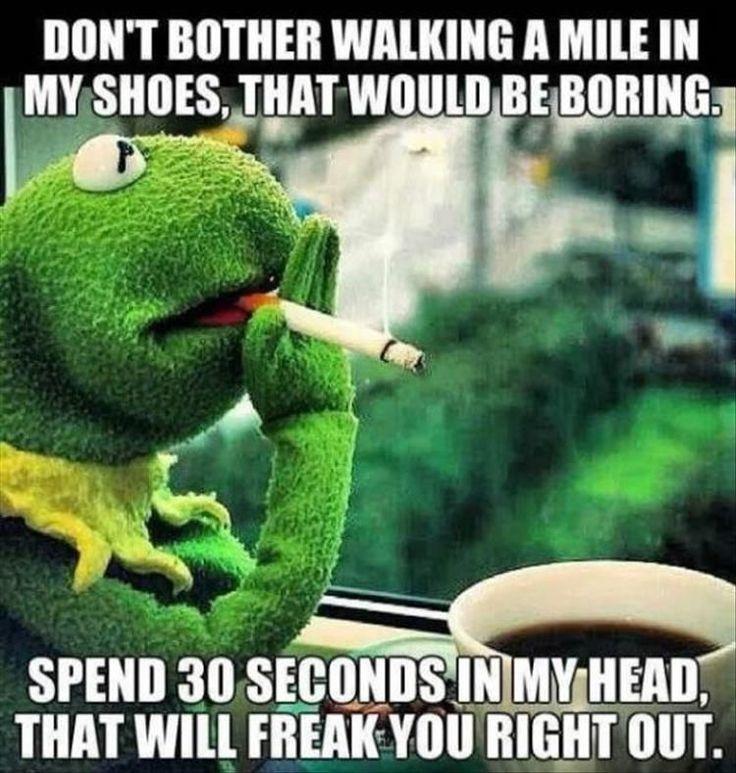 Morgen lustige Meme Dump 33 Bilder lustige Kermit Meme, lustige Freitag Meme, lustige Qu … – Kelly Blog – drogerie