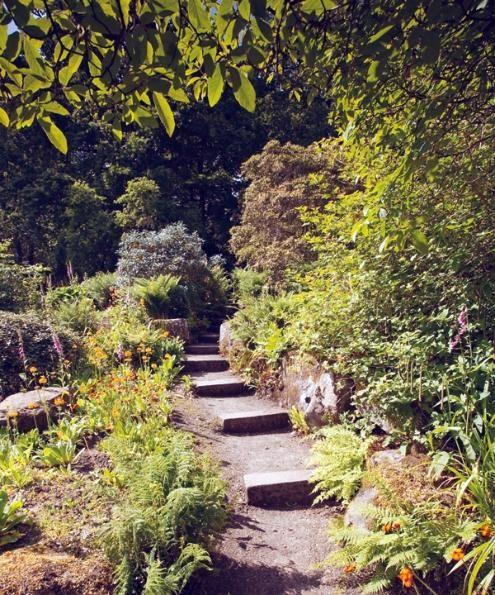 Photographer Lee Beel explores RHS Harlow Carr Gardens in ...