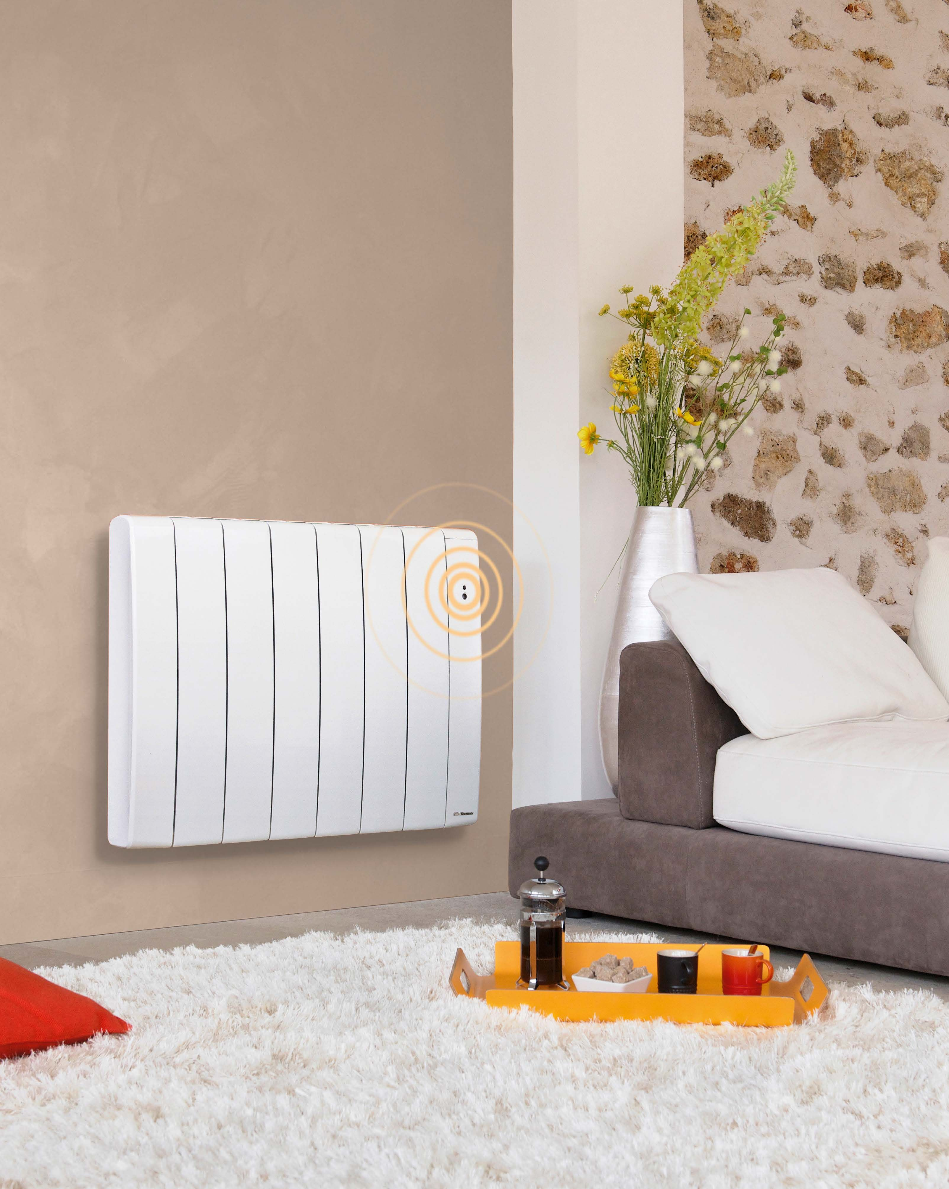 radiateurs lectriques conomiques simple radiateur. Black Bedroom Furniture Sets. Home Design Ideas
