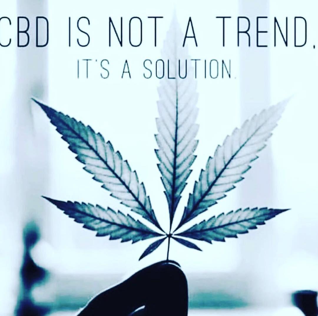 "CBD EDUCATE on Instagram: ""CBD IS NOT A TREND! IT'S A SOLUTION! I find it funny when people say CBD is a trend!  #cbd #cbdoil #cbdvape #cbdgummies #cbdflowers…"""