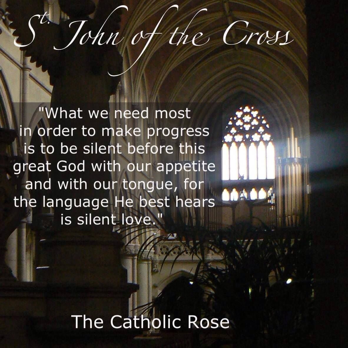 St John Of The Cross Quotes Stjohn Of The Cross  Chosen Peace  Pinterest  Saints Saint