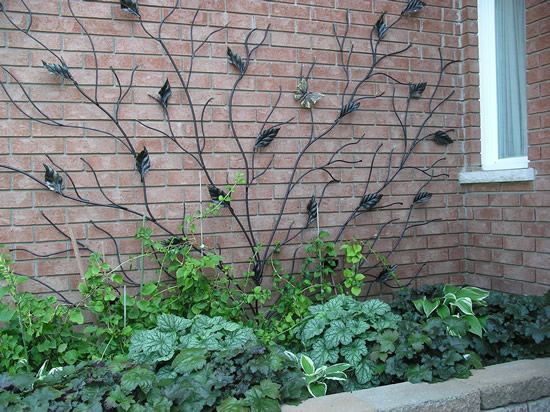 Metal Trellis Evolution Iron Projects Gardens