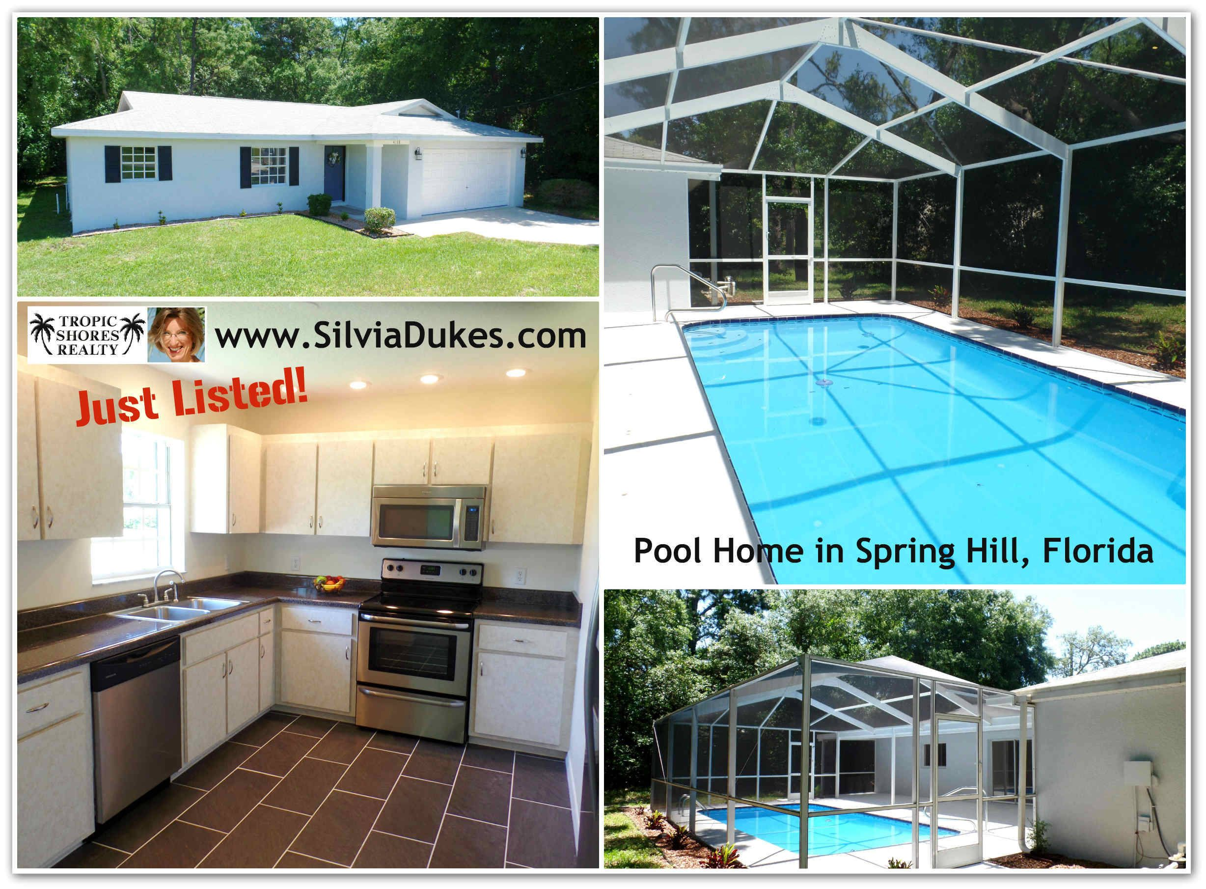4118 Ramona Spring Hill Florida Pool Home For Sale By Silvia Dukes