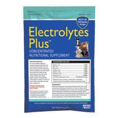 Sav A Caf Electrolytes Plus Multi Species Supplement 6 Oz Packet Pack Of 6 Electrolytes Livestock Health Supplements