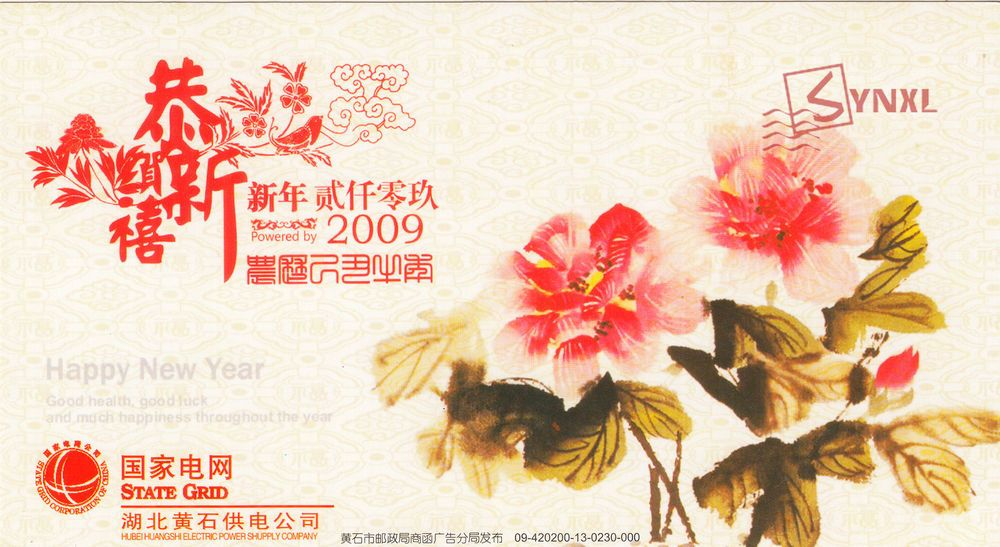 China 2009 New Year Postcard Traditional Meticulous Flower