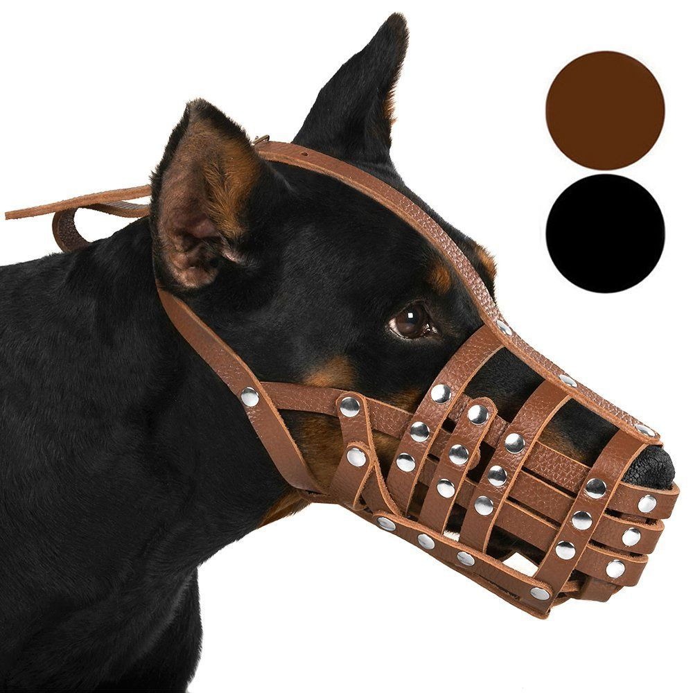 Collardirect Doberman Dog Muzzle Leather Colly Basket Black Brown Read More Reviews Of The Product By Visiting The Link O Dog Muzzle Doberman Dogs Pet Dogs