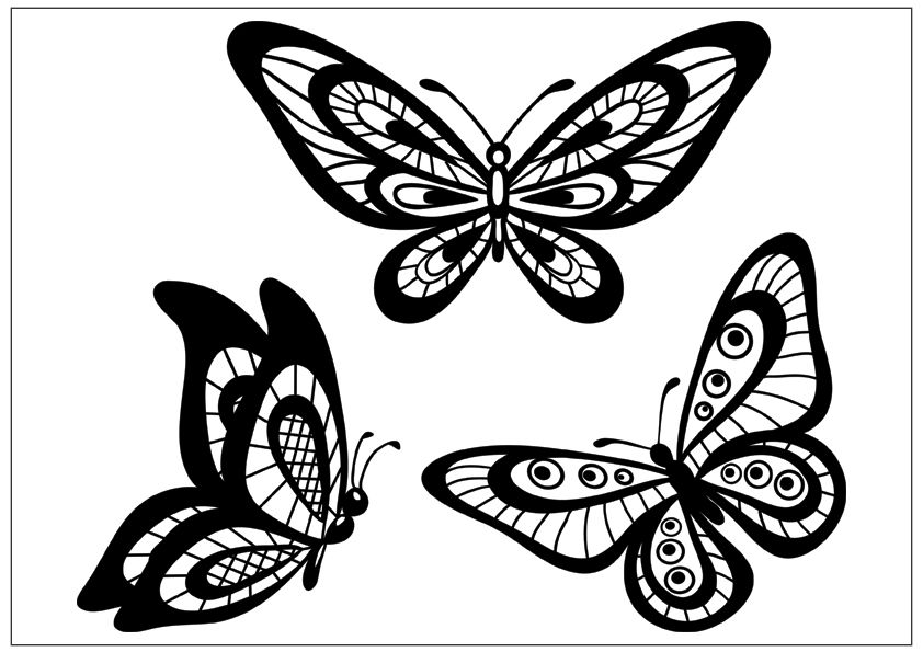 Three Butterflies Butterfly Coloring Page Simple Butterfly Butterfly Black And White