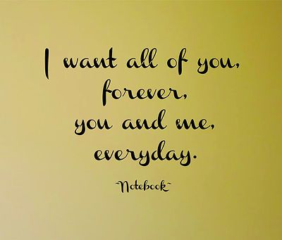 The Notebook Quote I Want All Of You Forever You And Me