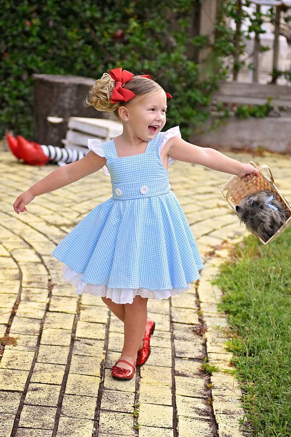 07e575e4065 Dorothy Wizard of Oz Dress with Built-in underskirt