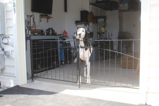 Interior Pet Gates As A Specialty Fence Youu0027ll Find Useful Around Your Home