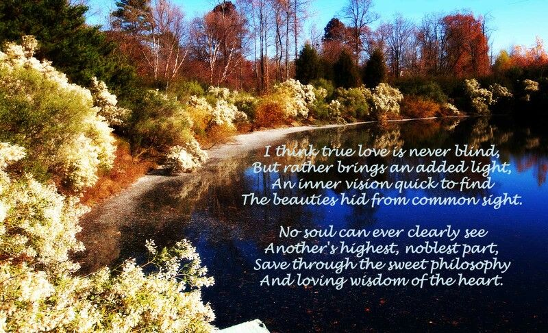 patience is one of the marks of true love - Thich Nhat ... |True Love Philosophy