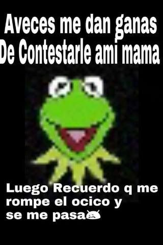 Ni Madres Fraces Chistosas Mensaje Chistosos Memes De La Rana