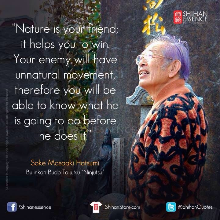 Soke Hatsumi On Nature Martial Arts Quotes Warrior Quotes Martial Arts