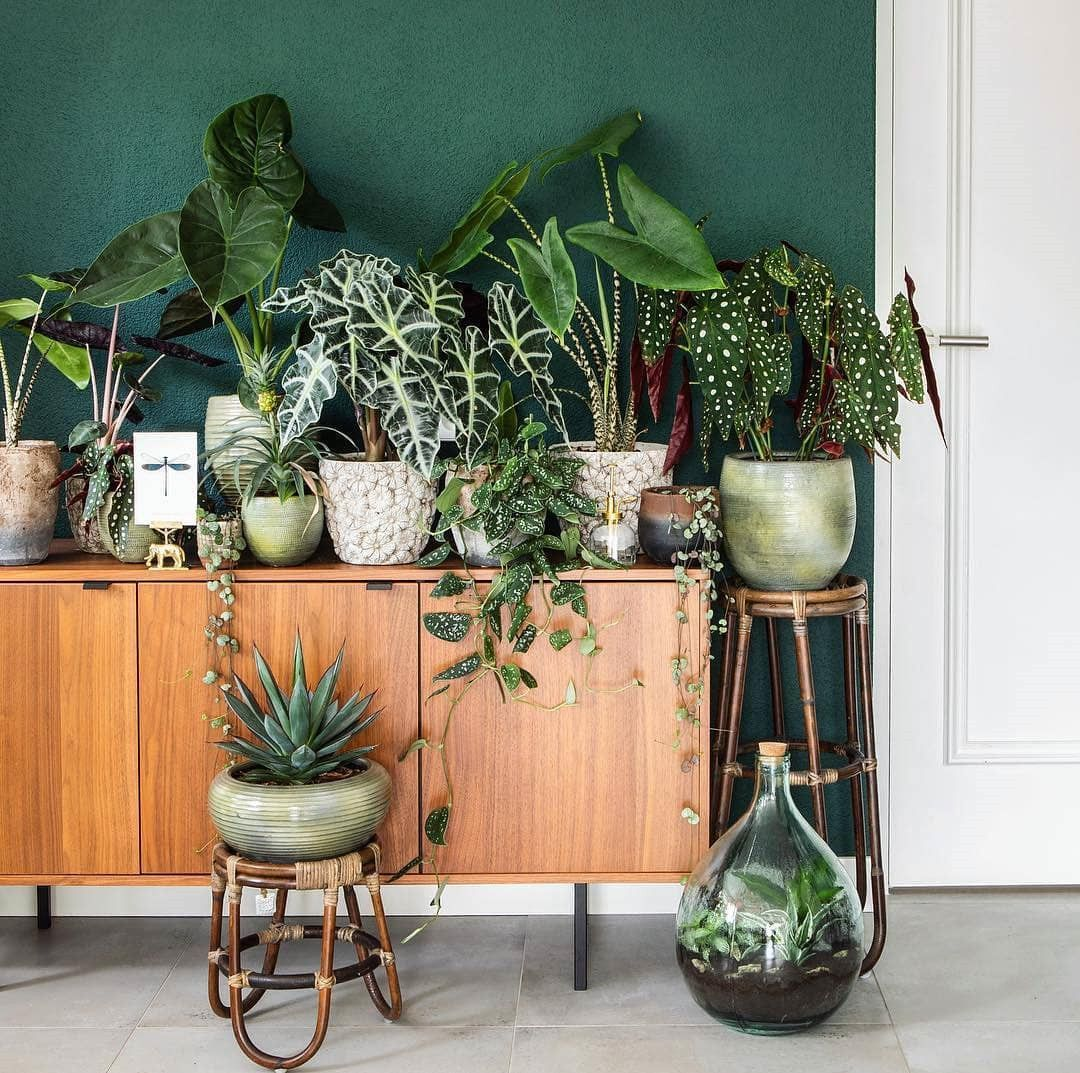 46 DIY Plant Stand ideas to Fill Your Living Room With ... on Amazing Plant Stand Ideas  id=97625