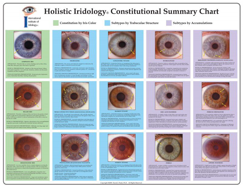 how to become an iridologist