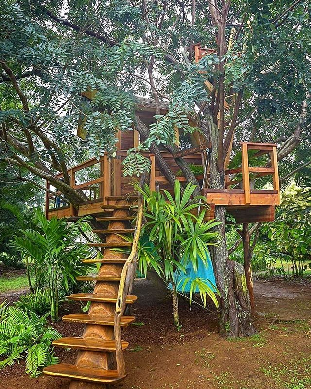 Another allnew episode of TreehouseMasters airs tomorrow