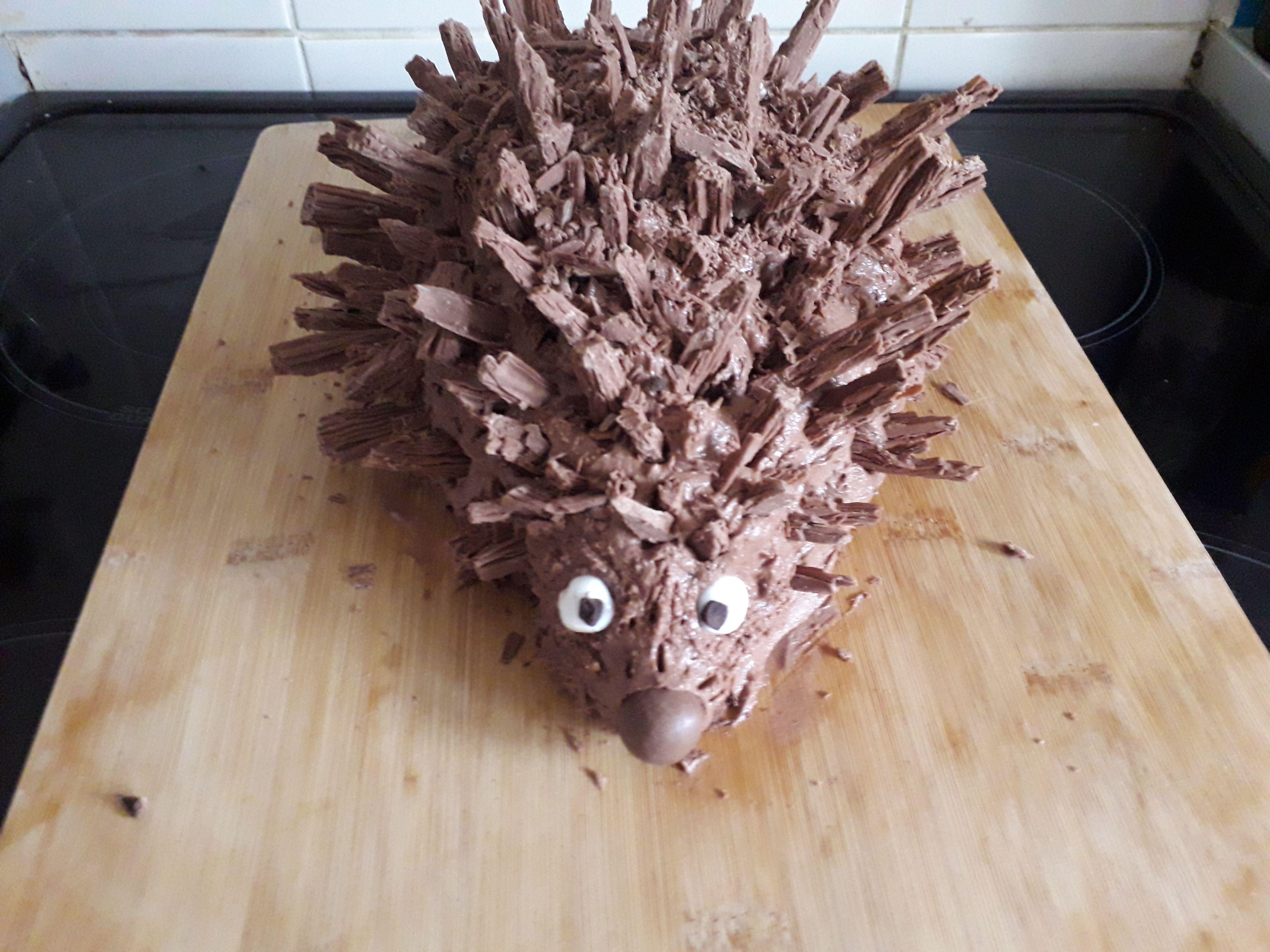Easy to make hedgehog cake recipe cake recipies cake