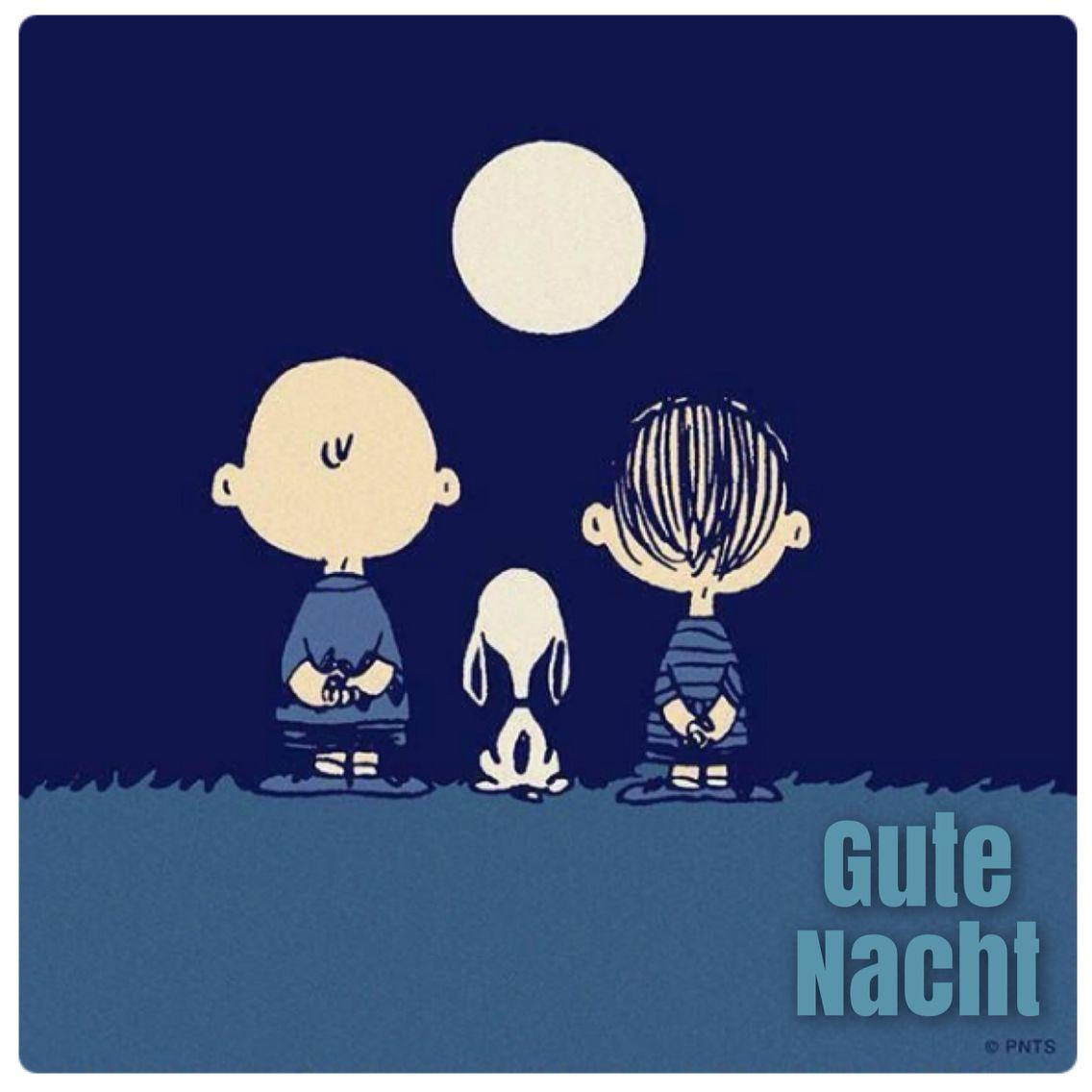 Gute Nacht, Snoopy. | Snoopy | Pinterest | Gute nacht und Nacht