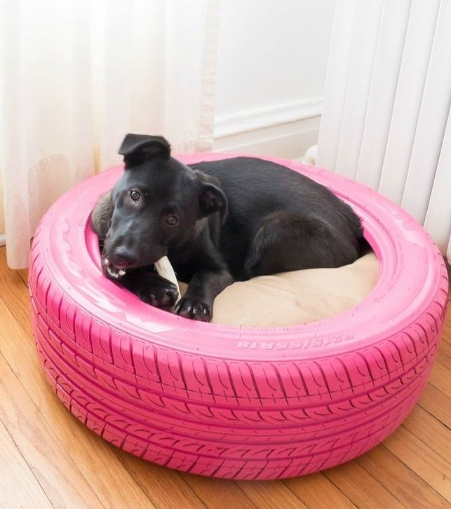 DIY Dog Bed: Paint An Old Tire And Voila! Source